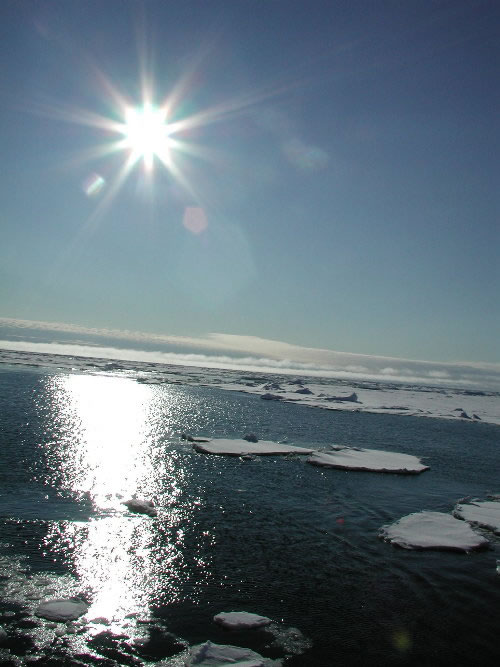 An arctic vista, photo taken from the